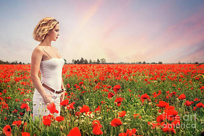 Royalty-Free and Rights-Managed Images - Field Of Dreams by Evelina Kremsdorf
