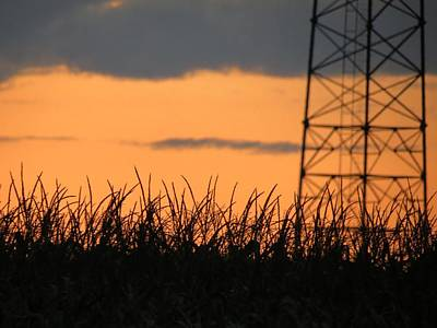 Photograph - Field Of Dreams by Kyle West