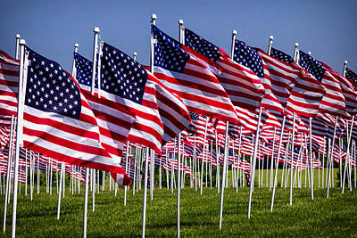 Photograph - Field Of Flags For Heroes by Bill Swartwout Fine Art Photography