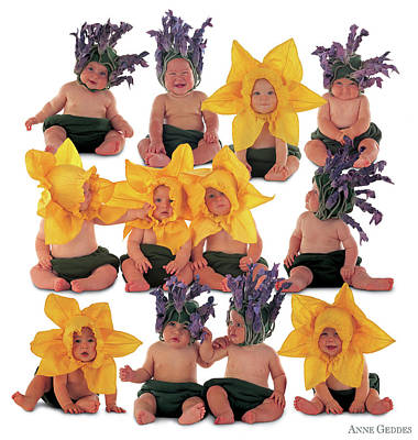 Photograph - Field Of Flowers by Anne Geddes