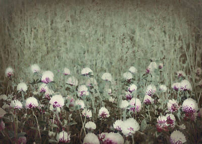 Photograph - Field Of Flowers by Lisa Kaye