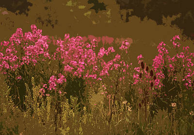 Photograph - Field Of Flowers by Rowana Ray