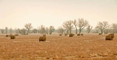 Field Of Hay Art Print