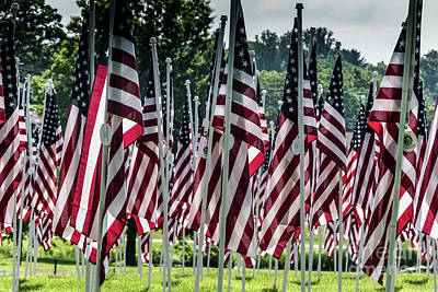 Photograph - Field Of Honor by Thomas Marchessault