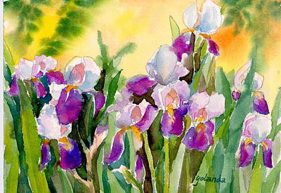 Field Of Irises Art Print