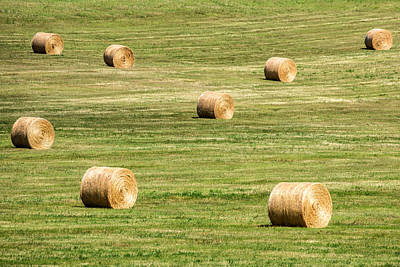 Field Of Large Round Bales Of Hay Art Print by Todd Klassy