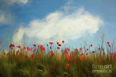 Photograph - Field Of Poppies by Dominique Guillaume