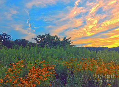 Photograph - Field Of Summer by Todd Breitling