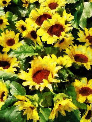 Field Of Sunflowers Print by Susan Savad