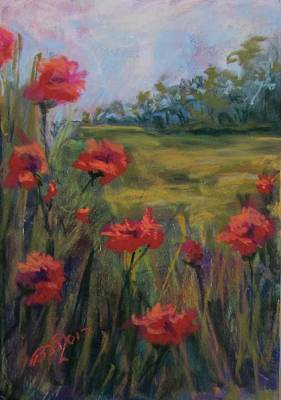 Pastel - Field Poppies by Barbara O'Toole