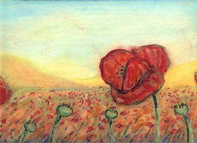 Poppies Drawing - Field Poppies by Robert Wolverton Jr