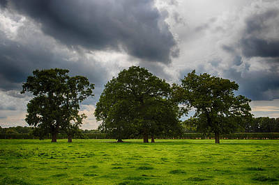 Photograph - Field Under A Stormy Sky by Leah Palmer