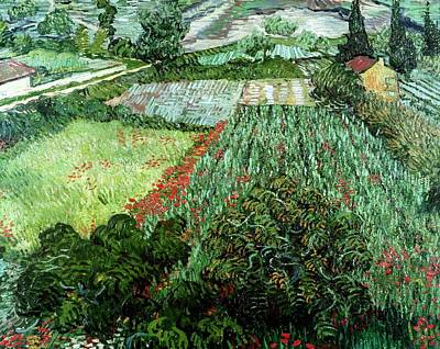 Painting - Field With Poppies by Artistic Panda