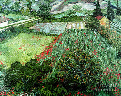 Field With Poppies Art Print by Vincent Van Gogh