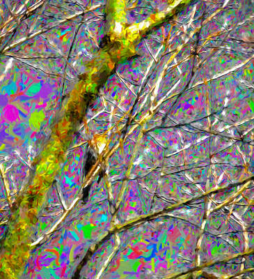 Sit-ins Digital Art - Fieldfare Abstract by Leif Sohlman