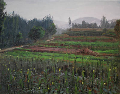 Oil Painting - Fields Of Corn by Wei Jia