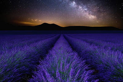 Photograph - Fields Of Eden by Jorge Maia
