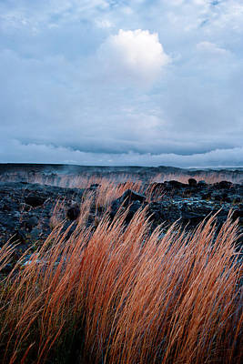Art Print featuring the photograph Fields Of Fire by Gary Cloud