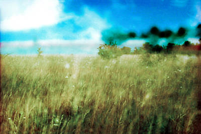 Photograph - Fields Of Giverny, France by Dubi Roman