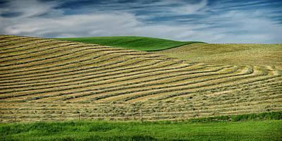 Photograph - Fields Of Grain Palouse Wa Dsc04705 by Greg Kluempers