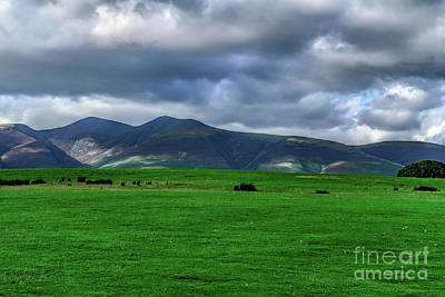 Photograph - Fields Of Keswick by Elvis Vaughn