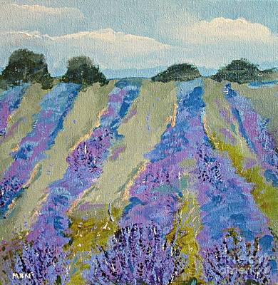 Fields Of Lavender Art Print