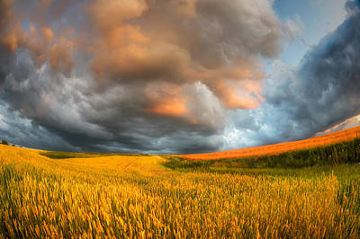 Fields Of Storm Print by Piotr Krol (bax)