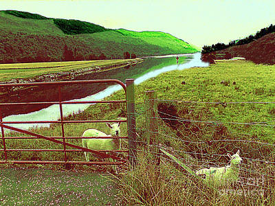 Photograph - Fields, Stream, Fence, Hills And Sheep In Scotland's Countryside by Merton Allen