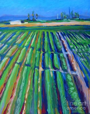 Fields Original by Vanessa Hadady BFA MA