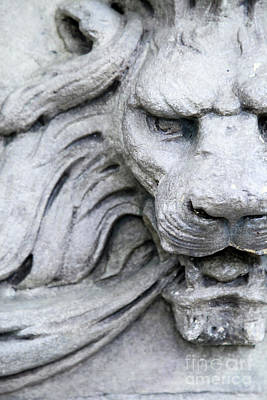 Photograph - Fierce Stone Lion by Heather Green