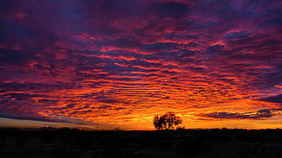 Photograph - Fiery Arizona Skies  by Saija Lehtonen