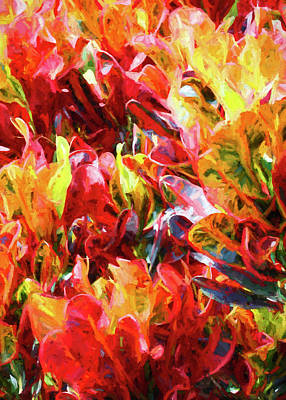 Photograph - Fiery Croton Leaves by HH Photography of Florida