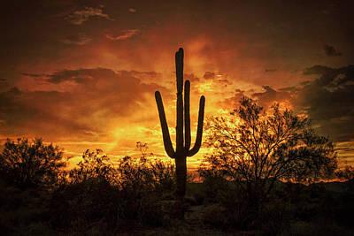 Photograph - Fiery Desert Skies  by Saija Lehtonen