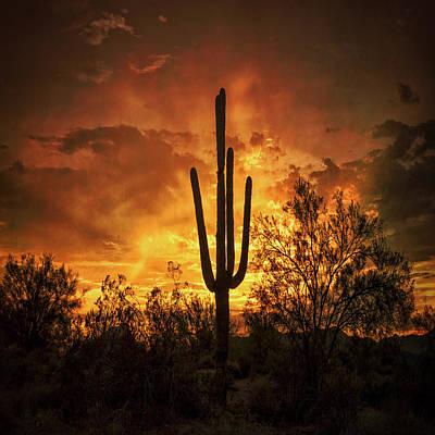 Photograph - Fiery Desert Skies Square  by Saija Lehtonen