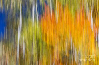 Impressionism Photos - Fiery Fall by Elena Elisseeva