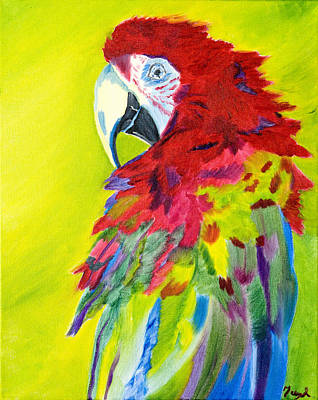 Fiery Feathers Art Print
