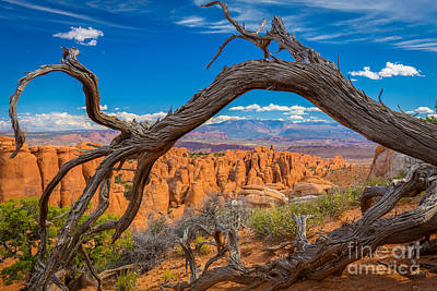 Red Rock Photograph - Fiery Furnace by Inge Johnsson