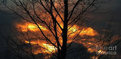 Photograph - Fire In The Sky by Janice Westerberg
