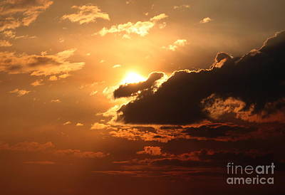 Photograph - Fiery Sun by Erica Hanel