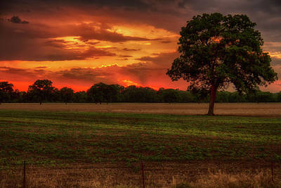 Photograph - Fiery Sunset by Debby Richards