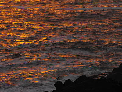 Photograph - Fiery Sunset Glow On The Ocean by Michael Oceanofwisdom Bidwell