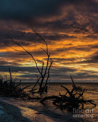 Photograph - Fiery Sunset In Longboat Key by Damon Powers