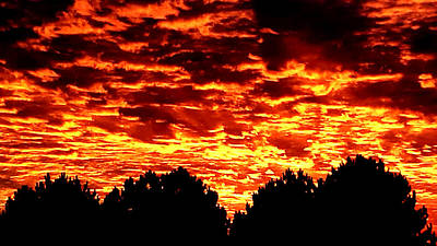 Photograph - Fiery Sunset by Nikki Dalton