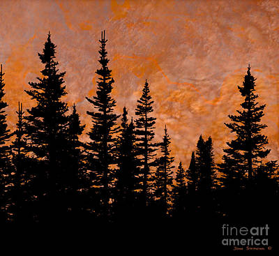 Photograph - Fiery Sunset Sky Evergreen Silhouette by John Stephens