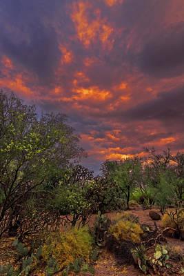 Photograph - Fiery Sunset V17 by Mark Myhaver