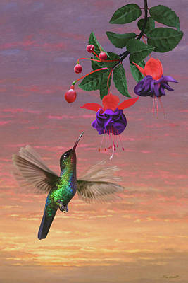 Digital Art - Fiery Throated Hummingbird by Spadecaller