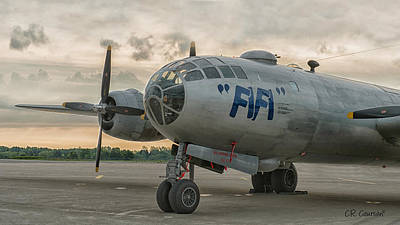 Photograph - Fifi At Dawn by CR  Courson