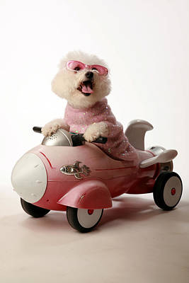Fifi Is Ready For Take Off In Her Rocket Car Art Print