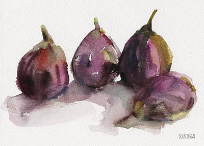 Fruit Painting - Fig Season by Beverly Brown Prints