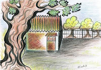 Drawing - Fig Tree by Teresa White